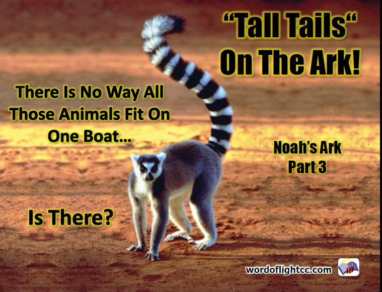 Tall Tails from the Ark, lesson 3 in our Noah's Ark Series from Word of Light Community church